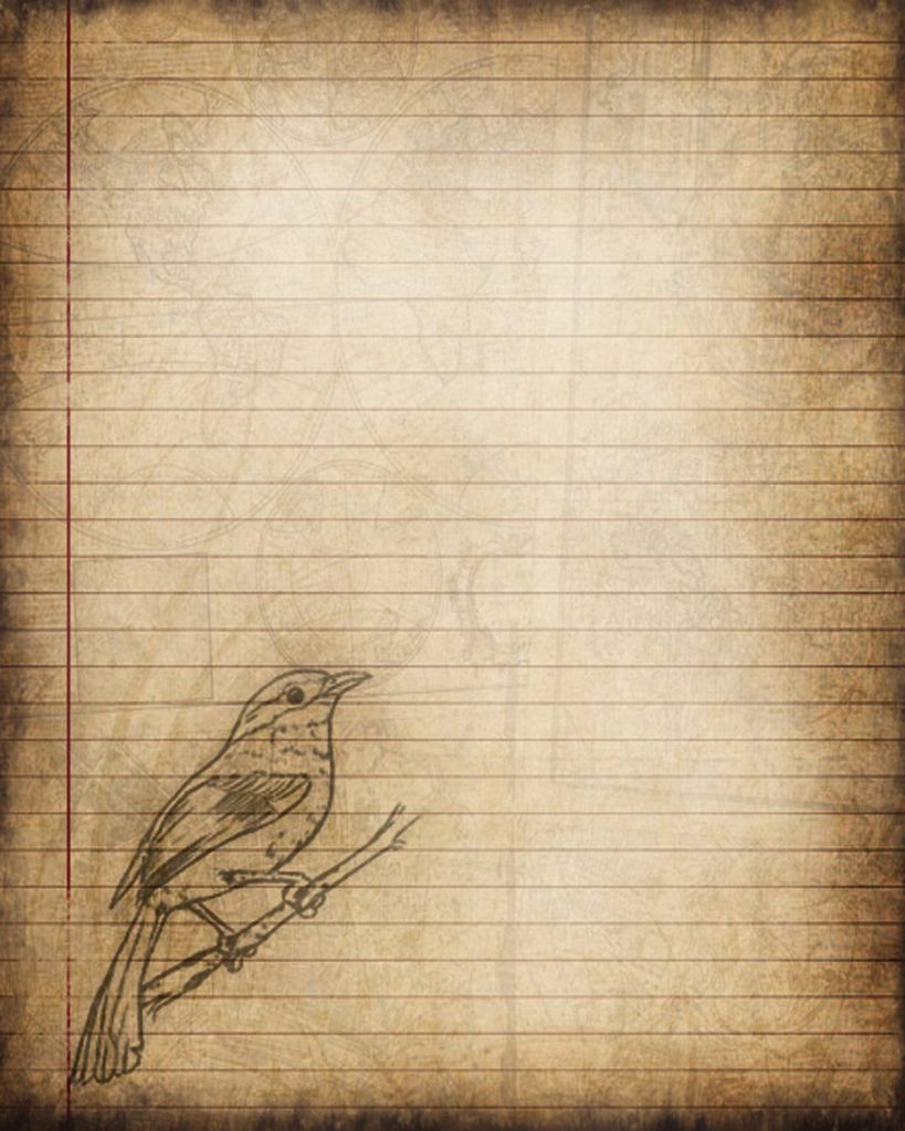 Printable Journal Page Bird Digital Instant Download Lined