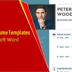 One-page Resume Templates For Word