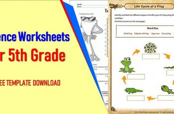 Science Worksheets For 5th Grade
