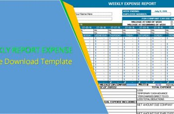 Weekly Expense Report Template - Excel
