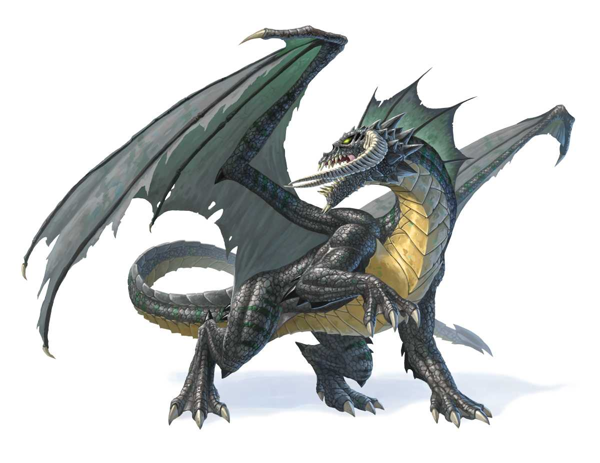 Best Dnd Black Dragon