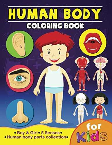 Printable Our Bodies For Preschool