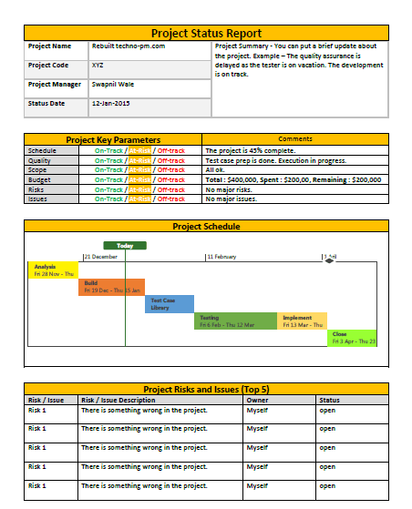 Onepage Project Status Report Template